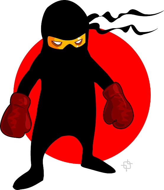 How To Become A Ninja Writerfeng Shui For Writers
